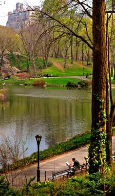 The lagoon on the south side of Central Park.