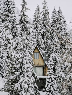 Dreaming Of: A Cozy Ski Chalet...