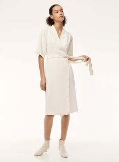 Babaton CLUZET DRESS | Aritzia