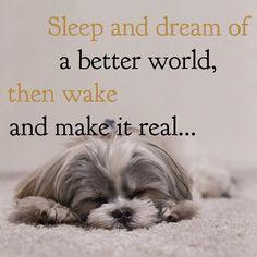 Zzzzzz... Yep dream #sweetdreams everyone! x