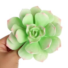 Succulent plants are a popular flower to place on wedding cakes. It's natural outdoor qualities makes it a perfect cake topper for outdoor wedding cakes. Succulent Wedding Cakes, Succulent Centerpieces, Succulent Terrarium, Succulent Cakes, Fondant Flowers, Sugar Flowers, Diy Flowers, Paper Flowers, Paper Succulents