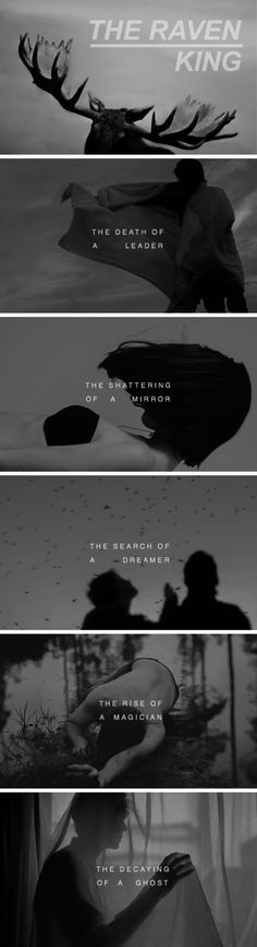 The fourth and final installment in the Raven Cycle series>>>>I am not ready for this!!!