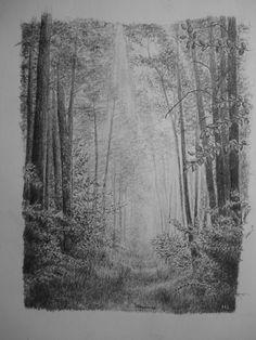H.L Forêt, Perspective Atmosphérique, Crayon, Dessin, Nu0026b.
