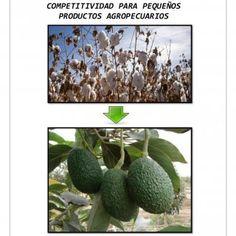 GOBIERNO REGIONAL DE ICA DIRECCION REGIONAL AGRARIA ICA AGENCIA AGRARIA CHINCHA COMPETITIVIDAD PARA PEQUEÑOS PRODUCTOS AGROPECUARIOS ELABORACION: ING. JORGE. http://slidehot.com/resources/competitividad-para-pequenos-productores.22333/