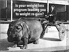 The wrong weight loss strategy overcomes your will power, #weightlossmotication via @DiscoverSelf