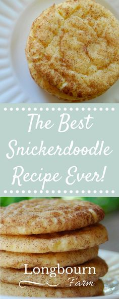 Get the best snickerdoodle recipe out there! This is a family favorite that I have been making for years. Perfect cinnamon sugar cookie goodness every time!
