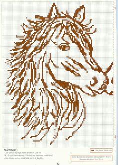 Deel 1 paarden hoofden