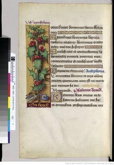 Horae ad usum Romanum, dites Grandes Heures d'Anne de Bretagne -- 1505-1510 -- manuscrits