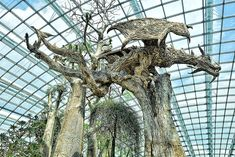 Driftwood Dragons And Beast Sculptures By James Doran-Webb  , BoredPanda