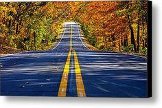 Autumn Road Canvas Print / Canvas Art By Phil Koch