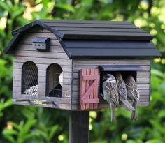 cabane à oiseaux, belle maison d'oiseaux