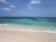 Martinique Paradise