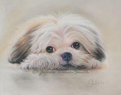 Shih Tzu Shitzu Dog Art Shih Tzu Print by ArtByJulene on Etsy