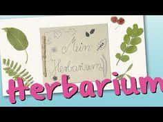 Basteln mit Kindern - Kostenlose Bastelvorlage Natur: Herbarium basteln