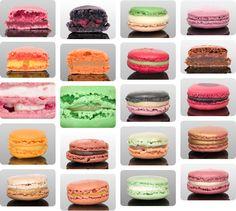 parisian macaron crimes & misdemeanors