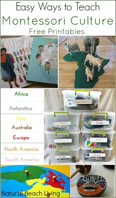 Easy Ways to Teach Montessori Culture with Free Printables, Continent Boxes, Multicultural Books and Activities including Zoology, Science, Botany, Geography, History, Art and Music...