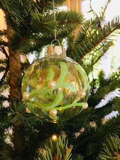 Christmas Tunes, Christmas Ornaments, Lilac, Journal, Holiday Decor, Blog, Christmas Jewelry, Syringa Vulgaris, Blogging