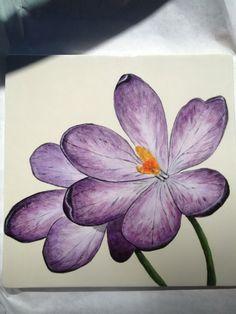 Painted Pottery / purple flower -crocus