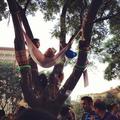 This is during protest..There are hammocks.
