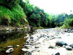 Keep things cool in the river. Kalu Yala, Panama