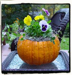 Consider turning a hollowed out pumpkin into a flower pot for a delightful fall arrangement!