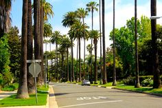 How to get weed card california online. California Palm Trees, California Travel, Travel Maps, Travel Usa, Weed Card, Los Angeles Travel Guide, Road Trip Map, Road Trips, Travel Chic
