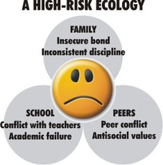 Difference between high and low risk. This highlights the importance of family, school, and peers
