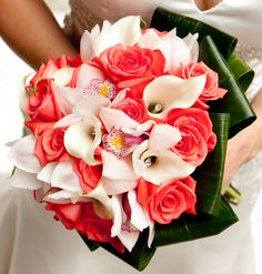 Coral Roses, White Cymbidium Orchids, White Jeweled Mini-Calla Lilies, and an Aspidistra Collar Bouquet.