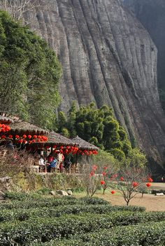 Tea house at a river bend, Fujian, China 福建省 Someday I will visit this with Nicole.