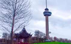 Euromast, Rotterdam Rotterdam, Cn Tower, Building, Travel, Viajes, Buildings, Destinations, Traveling, Trips