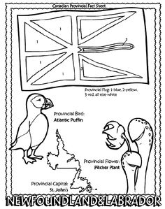 Canadian Province - Newfoundland and Labrador coloring page