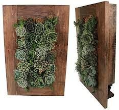 Resultado de imagem para vertical wall garden succulent