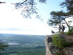 Explore the best hiking destinations in Chattanooga, TN, including the trails on Lookout Mountain, Signal Mountain, and more. Hiking Places, Hiking Spots, Camping Spots, Hiking Tips, Signal Mountain Tennessee, Camping In Tennessee, Chattanooga Tennessee, Lookout Mountain, Mountain Hiking
