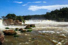 Reserva Natural del Parque Yaigojé Apaporis. Colombia