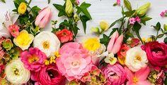 Como fazer o buquê de flores durar mais - dicas naturais