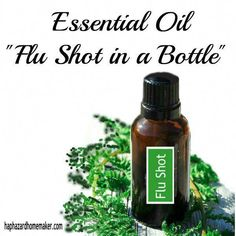 Get ready for cold and flu season! Make up this easy essential oil blend to help with immunity support. haphazardhomemaker.com #EssentialOilsForColdFluSeason Oregano Essential Oil, Essential Oils For Colds, Oregano Oil, Tea Tree Essential Oil, Essential Oil Uses, Doterra Essential Oils, Young Living Essential Oils, Essential Oil Diffuser, Thieves Essential Oil