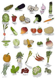 Vegetables : Rob Griffiths Illustration