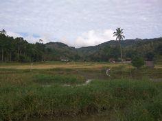 Kampung Halaman Papakelan Tondano North Sulawesi Indonesia