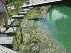 natural pools | BioNova® Natural Swimming Pools | Red Square Pools (702) 530-7331