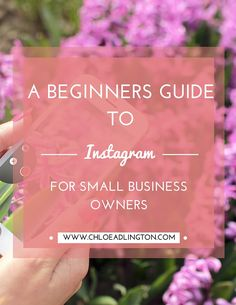 A beginners guide to Instagram for small businesses and bloggers - including how to set up your profile for success, what to post and how to increase your Instagram followers!