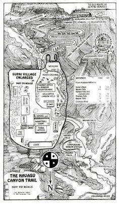 Photos - Santa Monica Hiking Club (Los Angeles, CA) Meetup Havasupai Falls Hike, Bryce Canyon, Santa Monica Hiking, Grand Canyon Waterfalls, Reserva India, Hiking Club, Hiking Trips, Hiking Places, National Parks