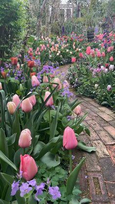 Garden Yard Ideas, Garden Paths, Garden Projects, Garden Art, The Secret Garden, Garden Cottage, Backyard Landscaping, Landscaping Ideas, Dream Garden