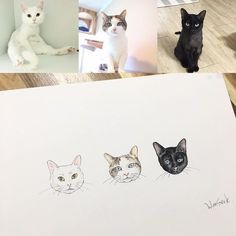 Tattoo cat ideas illustrations ideas for 2019 Cat Face Tattoos, Cat Portrait Tattoos, Black Cat Tattoos, Mini Tattoos, Animal Tattoos, Body Art Tattoos, Small Tattoos, Ankle Tattoos, Meow Tattoo
