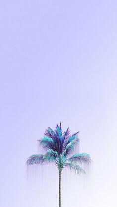 Mint palm