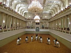 spanish riding school - The best horse performance I've ever seen!