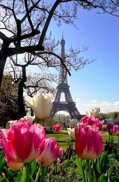 Eiffel Tower , Paris - France