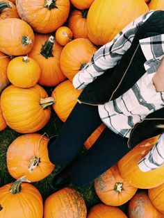 missmissouriprep: Pop a squat on some pumpkins - I Have Been Homesick For You Since We Met