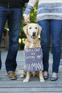 Mom and Dad are getting me a human!