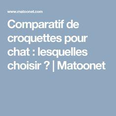 Comparatif de croquettes pour chat : lesquelles choisir ?  | Matoonet