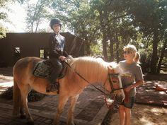 The Magic of SpiritHorse Therapy   Spirit Horse Therapeutic Riding Center
